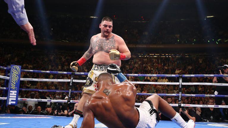 Betting odds explained boxing gloves british open 2021 oddschecker betting